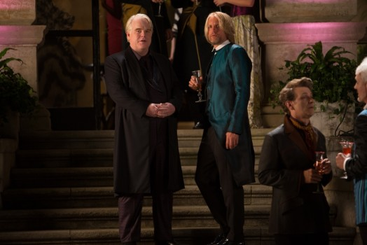 Catching fire - Plutarch Heavensbee